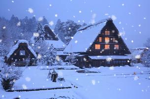 雪景色の白川郷 明善寺の庫裡の夜景の写真素材 [FYI01795818]