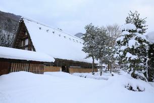雪景色の白川郷・長瀬家の写真素材 [FYI01795834]