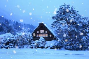 雪景色の白川郷・和田家の夜景の写真素材 [FYI01795880]
