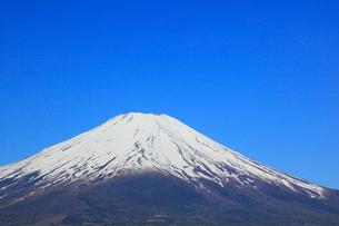 山中湖畔から望む富士山の写真素材 [FYI01795979]