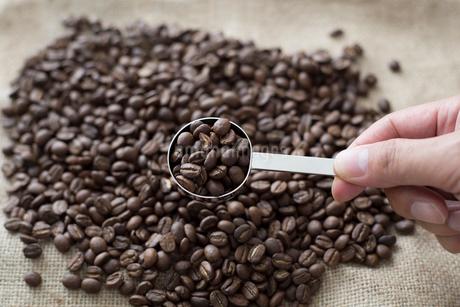計量スプーンですくわれた麻布の上のコーヒー豆の写真素材 [FYI01796049]