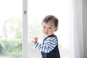 リビングルームで遊ぶ赤ちゃんの写真素材 [FYI01796107]