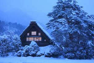 雪景色の白川郷・和田家の夜景の写真素材 [FYI01796242]