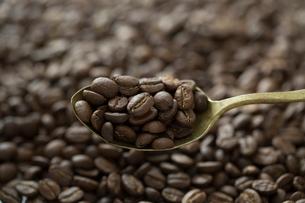 コーヒー豆とスプーンの写真素材 [FYI01796336]
