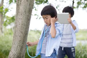 木に聴診器を当てて音を聞く弟とその様子をタブレットで撮影する兄の写真素材 [FYI01796360]