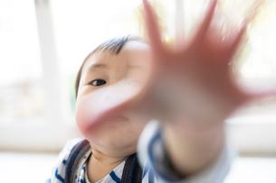リビングルームで遊ぶ赤ちゃんの写真素材 [FYI01796422]