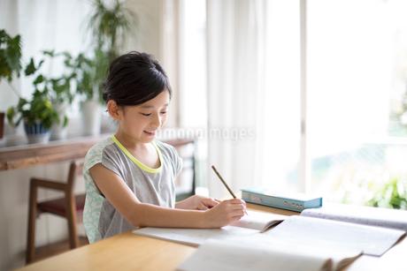 リビングで勉強をする女の子の写真素材 [FYI01796432]