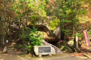 岩屋堂公園の祠の写真素材 [FYI01796433]