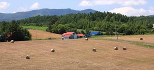 麦わらロールが転がる丘の写真素材 [FYI01796444]