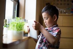タブレットで水槽や植物の写真を撮る小学生の男の子の写真素材 [FYI01796465]