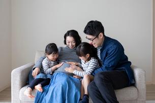 妊婦の母親のお腹に手を置く小さな姉妹と父親の写真素材 [FYI01796491]