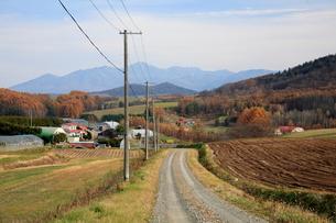 農家へ続く砂利道の写真素材 [FYI01796536]
