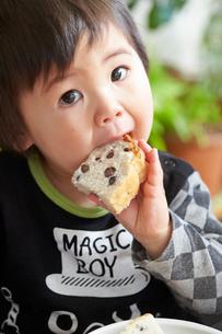 パンを食べる男の子の写真素材 [FYI01796699]