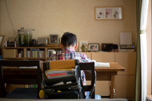リビングで宿題をする小学生の男の子の写真素材 [FYI01796707]