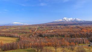紅葉の丘に斜里岳と海別岳の写真素材 [FYI01796774]