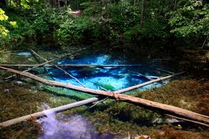 青く透き通る神の子池の写真素材 [FYI01796892]
