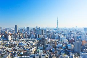 東京都 文京区から見るスカイツリーと街並みの写真素材 [FYI01796977]