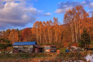 廃バスの佇む農家の写真素材 [FYI01797010]