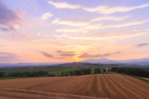 就実の丘の日の出の写真素材 [FYI01797053]