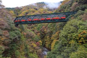 出山の鉄橋を渡る箱根登山鉄道の写真素材 [FYI01797062]