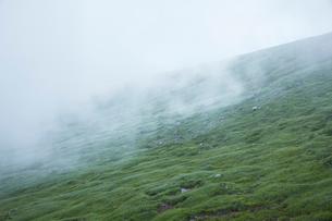 霧が霞んで幻想的な鳥海山風景の写真素材 [FYI01797261]
