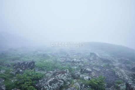 霧が霞んで幻想的な鳥海山風景の写真素材 [FYI01797304]