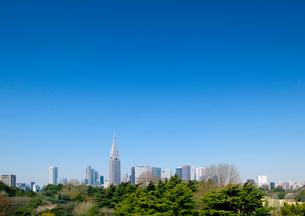新宿御苑越しに新宿高層ビル群を望むの写真素材 [FYI01797450]