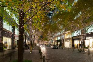 東京丸の内のイルミネーションの写真素材 [FYI01797506]