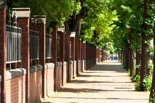 東京大学(本郷)のレンガ塀の写真素材 [FYI01797541]