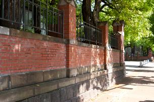東京大学のレンガ塀の写真素材 [FYI01797605]