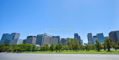丸の内のオフィス街の写真素材 [FYI01797631]