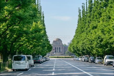 神宮外苑の銀杏並木の写真素材 [FYI01797670]