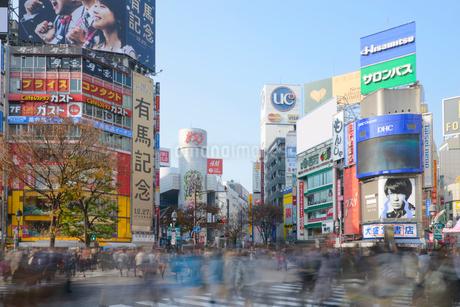 渋谷駅前スクランブル交差点の写真素材 [FYI01797675]