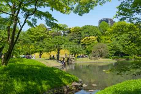 小石川後楽園の緑の写真素材 [FYI01797729]