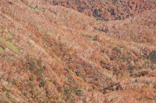 那須岳トレッキングの写真素材 [FYI01797746]