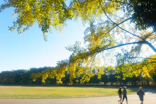 城北中央公園の写真素材 [FYI01798036]