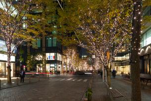 東京丸の内のイルミネーションの写真素材 [FYI01798048]