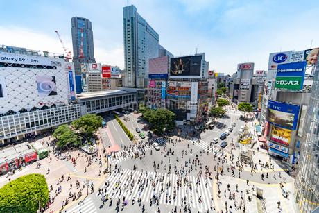 渋谷のスクランブル交差点の写真素材 [FYI01798085]