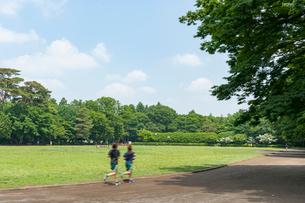 井の頭恩賜公園競技場の写真素材 [FYI01798120]
