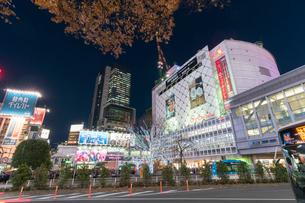 渋谷駅前の夜景の写真素材 [FYI01798193]