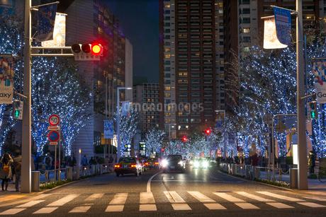 六本木けやき坂通りのイルミネーションの写真素材 [FYI01798311]