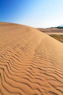 鳥取砂丘と空の写真素材 [FYI01798331]
