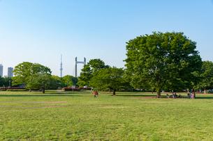 木場公園の風景の写真素材 [FYI01798377]