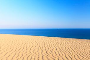 砂丘より望む青い海に白いヨットの写真素材 [FYI01798411]
