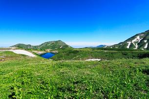 立山室堂平・お花畑にミクリガ池と大日岳などの山並みの写真素材 [FYI01798437]