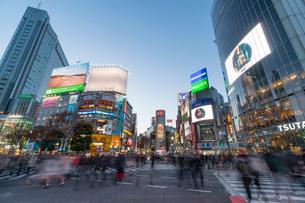 渋谷スクランブル交差点の夕景の写真素材 [FYI01798438]