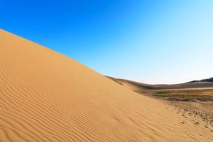 鳥取砂丘と空の写真素材 [FYI01798509]