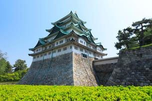 名古屋城天守閣と青空の写真素材 [FYI01798523]