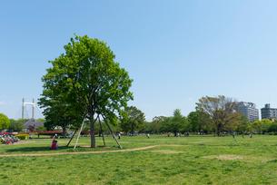 木場公園の風景の写真素材 [FYI01798555]