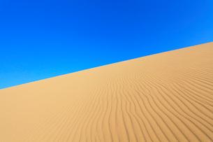 砂丘と空の写真素材 [FYI01798604]